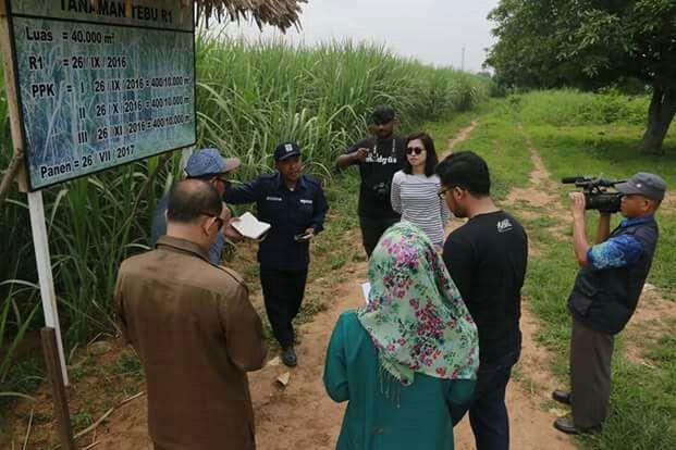 Kunjungan ke perkebunan Tebu milik Al-zaytun, Indramayu (dok. Latief weha)